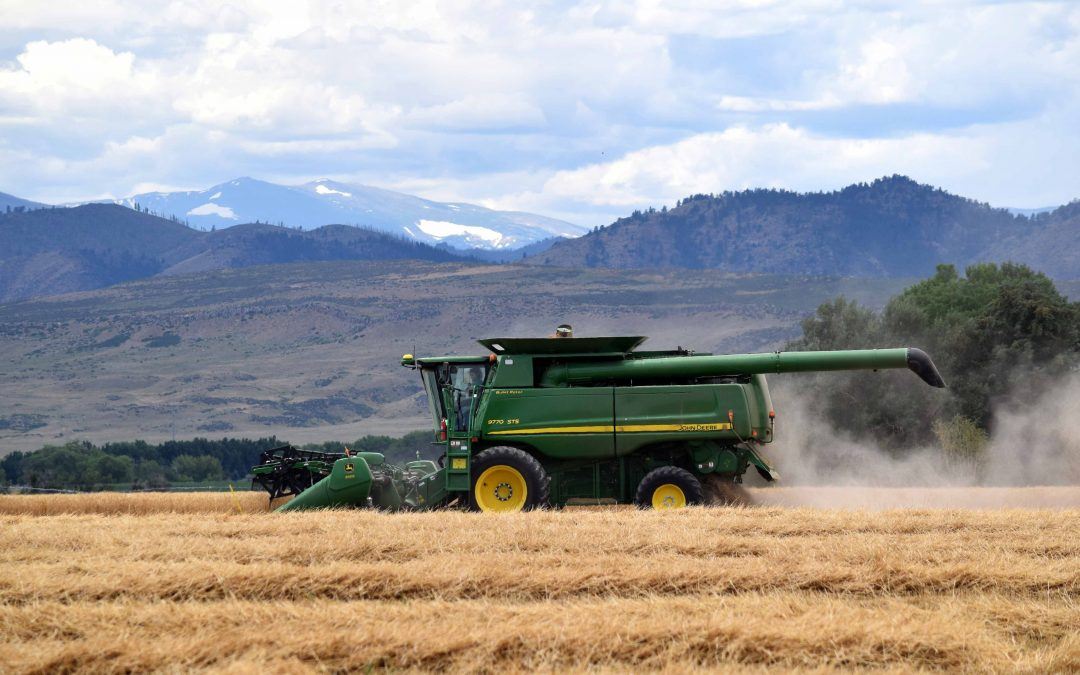 Recap: 2016 Winter Wheat Harvest